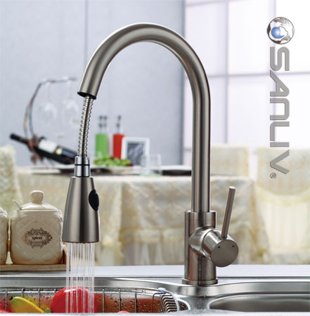 Pullout Spray Kitchen Sink Faucet 28108